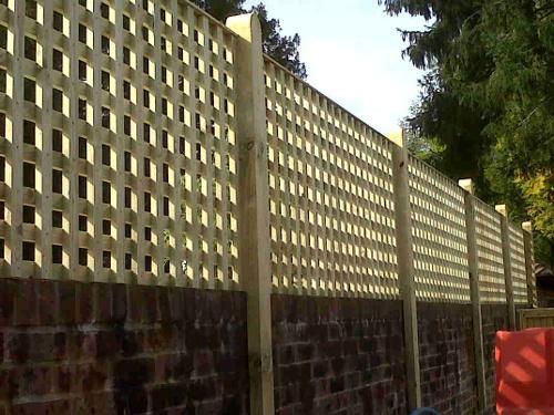 Trellis on wall by DK Fencing