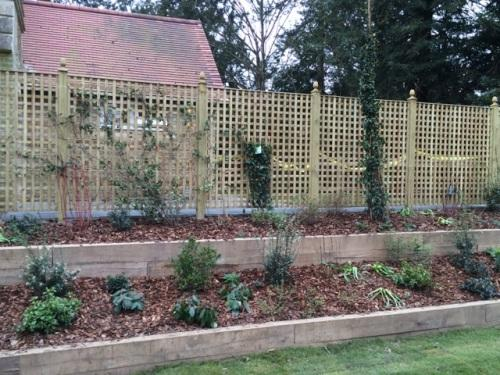 Trellis and Raised borders by DK Fencing