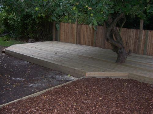 Decking built around a feature tree.