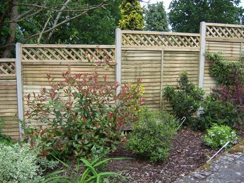 Treated fence panels, with diamond trellis on top with slotted concrete posts